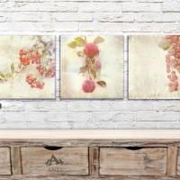 3er Set ROTE FRÜCHTE Bild auf Leinwand Holz Kunstdruck Print Äpfel Johannisbeeren Landhausstil VintageStyle ShabbyChic  Bild 2