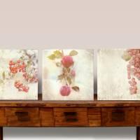 3er Set ROTE FRÜCHTE Bild auf Leinwand Holz Kunstdruck Print Äpfel Johannisbeeren Landhausstil VintageStyle ShabbyChic  Bild 3