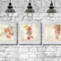 3er Set ROTE FRÜCHTE Bild auf Leinwand Holz Kunstdruck Print Äpfel Johannisbeeren Landhausstil VintageStyle ShabbyChic  Bild 4