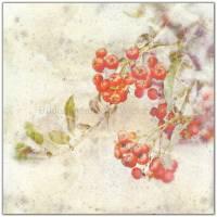 3er Set ROTE FRÜCHTE Bild auf Leinwand Holz Kunstdruck Print Äpfel Johannisbeeren Landhausstil VintageStyle ShabbyChic  Bild 5