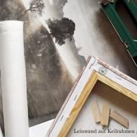 3er Set ROTE FRÜCHTE Bild auf Leinwand Holz Kunstdruck Print Äpfel Johannisbeeren Landhausstil VintageStyle ShabbyChic  Bild 9