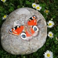 Pfauenauge, Schmetterling, Stein, Garten, paperweight, Acrylfarbe, Unika,Original, Muttertag Bild 1