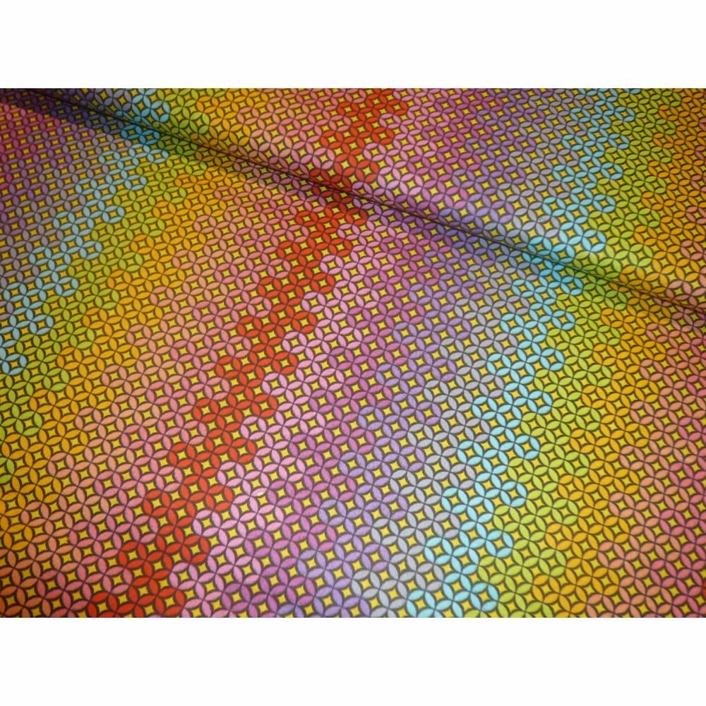 10,30 EUR/m Stoff Baumwolle Ornamente / Kreise bunt Bild 1