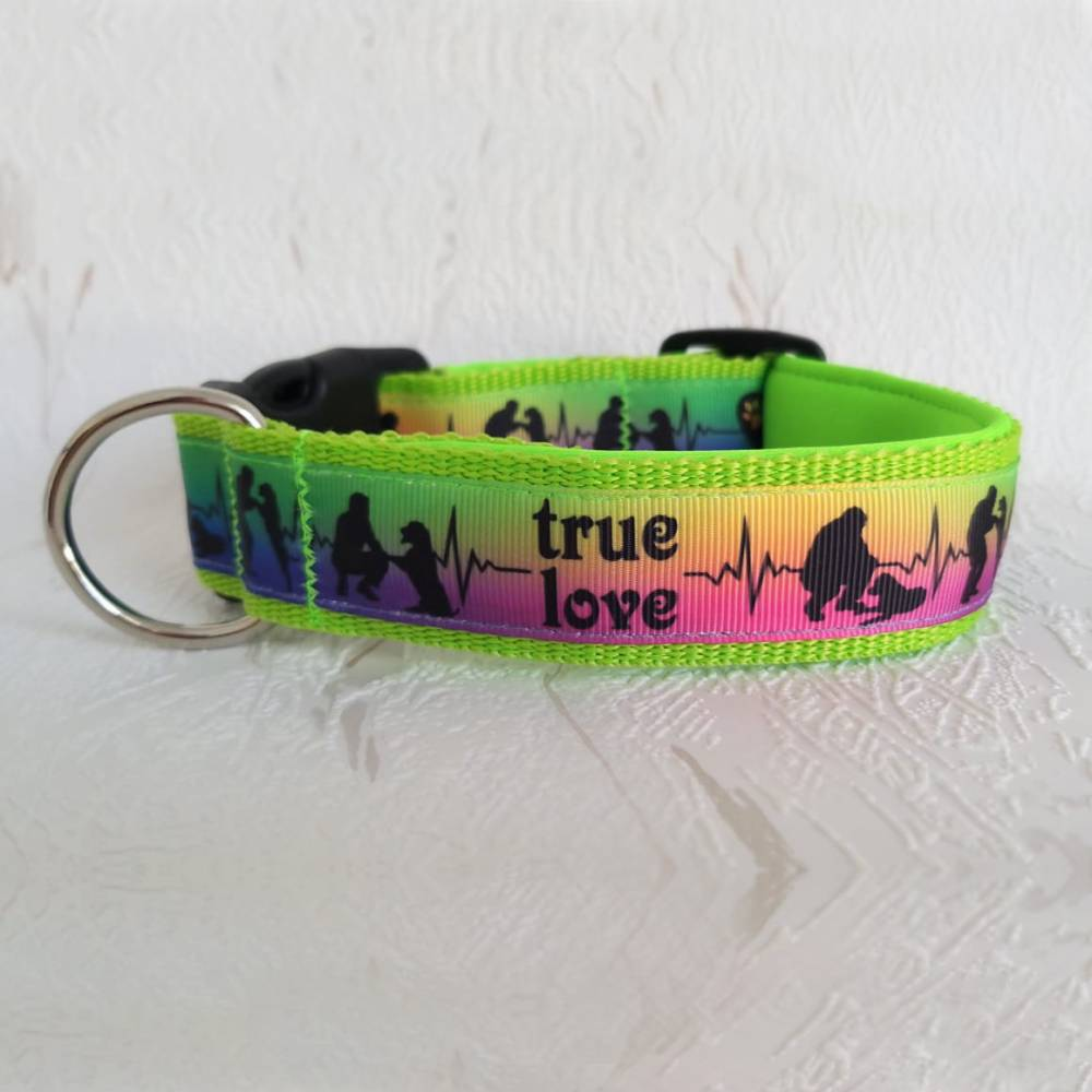 Halsband Hundehalsband True Love Neon Rainbow   Neopren gepolstert   25-40mm breit   S-XL   passende Leine erhältlich Bild 1