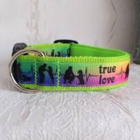 Halsband Hundehalsband True Love Neon Rainbow   Neopren gepolstert   25-40mm breit   S-XL   passende Leine erhältlich Bild 2