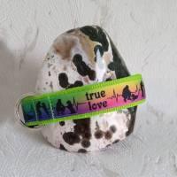Halsband Hundehalsband True Love Neon Rainbow   Neopren gepolstert   25-40mm breit   S-XL   passende Leine erhältlich Bild 3