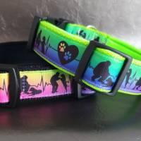 Halsband Hundehalsband True Love Neon Rainbow   Neopren gepolstert   25-40mm breit   S-XL   passende Leine erhältlich Bild 6