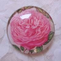 """6 Cabochon Magnete groß floral Vintage Stil Blumen Garten """"Florale"""" Geschenkidee für Frauen Gärtner Bild 2"""
