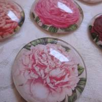 """6 Cabochon Magnete groß floral Vintage Stil Blumen Garten """"Florale"""" Geschenkidee für Frauen Gärtner Bild 4"""