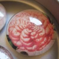 """6 Cabochon Magnete groß floral Vintage Stil Blumen Garten """"Florale"""" Geschenkidee für Frauen Gärtner Bild 6"""