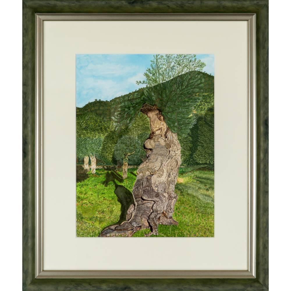 Iberischer Olivenbaum - Original Aquarellmalerei, gerahmtes Unikat Bild 1