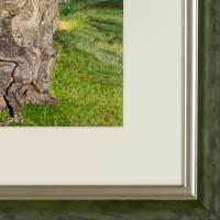 Iberischer Olivenbaum - Original Aquarellmalerei, gerahmtes Unikat Bild 2