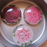 """6 Cabochon Magnete groß Rosen floral """"Roses"""" Geschenkidee Frauen Garten Geburtstag Weihnachten Bild 3"""