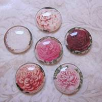 """6 Cabochon Magnete groß Rosen floral """"Roses"""" Geschenkidee Frauen Garten Geburtstag Weihnachten Bild 4"""
