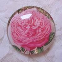 """6 Cabochon Magnete groß Rosen floral """"Roses"""" Geschenkidee Frauen Garten Geburtstag Weihnachten Bild 6"""