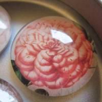 """6 Cabochon Magnete groß Rosen floral """"Roses"""" Geschenkidee Frauen Garten Geburtstag Weihnachten Bild 8"""