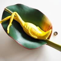 Bananenfrosch, Froschskulptur, Froschkönig, Froschplastik, Frosch Figur, modellierter Frosch, Toy Art, figurative Art Bild 3