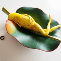 Bananenfrosch, Froschskulptur, Froschkönig, Froschplastik, Frosch Figur, modellierter Frosch, Toy Art, figurative Art Bild 7