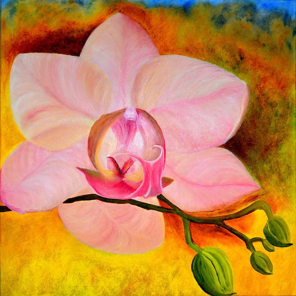 Rosa Phalaenopsis Orchideenblüte mit Knospen - Ölmalerei, Unikat Bild 1