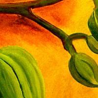 Rosa Phalaenopsis Orchideenblüte mit Knospen - Ölmalerei, Unikat Bild 3