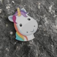 Einhorn, Regenbogen, Pferd, Kopf     Acryl, Brosche, Anstecker  Bild 1