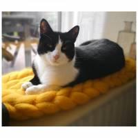 Fensterbankbett für Katzen - Katzenbett - Katzenkorb aus reiner Schurwolle Bild 2