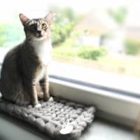 Fensterbankbett für Katzen - Katzenbett - Katzenkorb aus reiner Schurwolle Bild 3