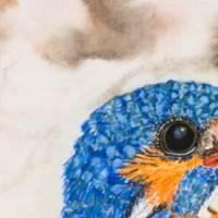 Eisvogel - Original Aquarellmalerei, gerahmtes Unikat Bild 3