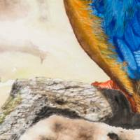 Eisvogel - Original Aquarellmalerei, gerahmtes Unikat Bild 4
