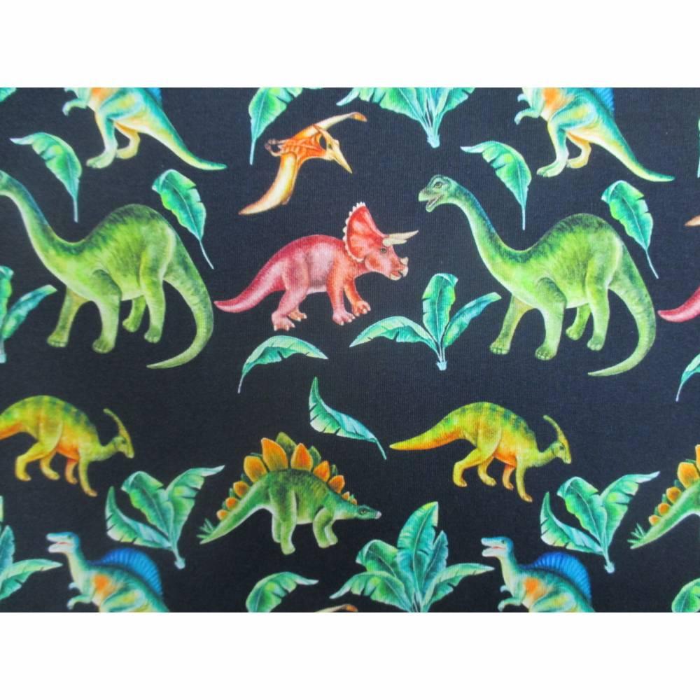 French Terry, Sweat  Dinosaurier, Palmen, marine Oeko-Tex Standard 100(1m/18,-€)  Bild 1