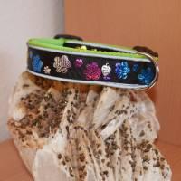 Halsband Hundehalsband m. Reflektoren Gr. 45-55 cm verstellbar ungepolstert od. gepolstert m. Neopren Bild 1