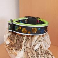 Halsband Hundehalsband m. Reflektoren Gr. 45-55 cm verstellbar ungepolstert od. gepolstert m. Neopren Bild 2