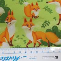 Softshell  mit Fleece -  Abseite, Fuchs hellgrün ( 1m/13,00€ ) Bild 3