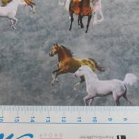 Softshell mit  Fleece-Abseite  Pferde grau ( 1m/14,00€ ) Bild 2