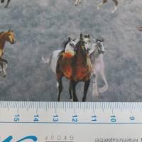 Softshell mit  Fleece-Abseite  Pferde grau ( 1m/14,00€ ) Bild 3