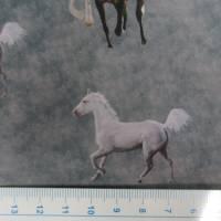 Softshell mit  Fleece-Abseite  Pferde grau ( 1m/14,00€ ) Bild 5