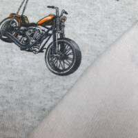French Terry Baumwolljersey Motorrad hellgrau meliert Ökotex 100 (1m/17,-€)  Bild 3