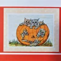 Halloween Katzen mit Kürbis Karten Set Katzenkarten Kartenset Herbst Geburtstagskarte Bild 3