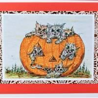 Halloween Katzen mit Kürbis Karten Set Katzenkarten Kartenset Herbst Geburtstagskarte Bild 5