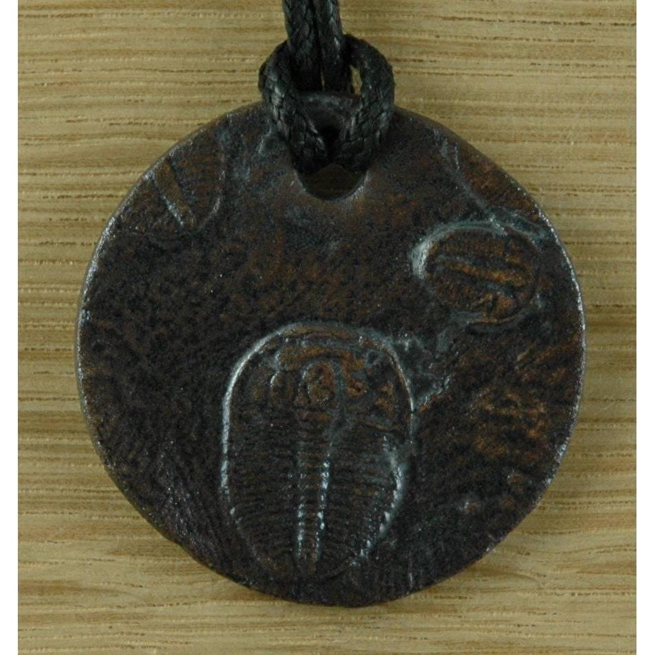Schmuck Anhänger mit Trilobit Nachbildung in Museums Qualität. Fossil, Paläontologie, Ausgrabung, Versteinerung Bild 1