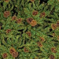 Patchworkstoff kleine rote Christrosen  auf grünem Hintergrund von Fabri Quilt Saison Greetings 216 Nr. 41 Bild 3