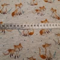 """Alpenfleece """"Fuchs"""", hellgrau-meliert, 150 cm breit, Meterware, Preis pro 0,5 lfdm Bild 2"""