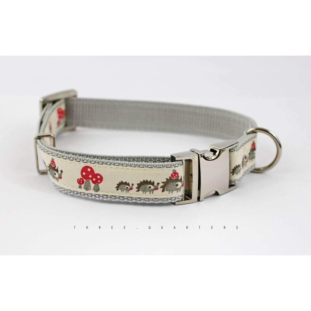 Hundehalsband, Hund, Igel, Pilze, beige, Natur, silber, Halsband, Hunde, Welpe, Haustier, hellgrau, edel, modern, trendy, Tiere Bild 1