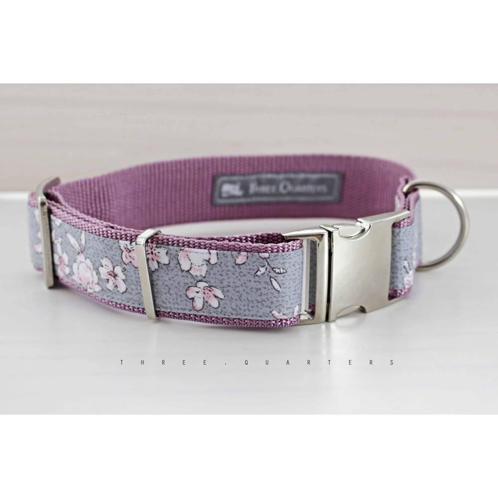 Hundehalsband, Hund, altrosa, grau, flieder, weiß, rosa, Hunde, Halsband, Blumen, silber, 30mm, Gurtband, Haustier, lila, hellgrau Bild 1