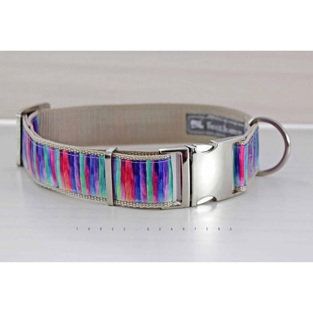 Hundehalsband, Hund, Streifen, bunt, beige, Regenbogen, Design, modern, Halsband, Hunde, Welpe, gestreift, blau, grün, silber, stylisch Bild 1