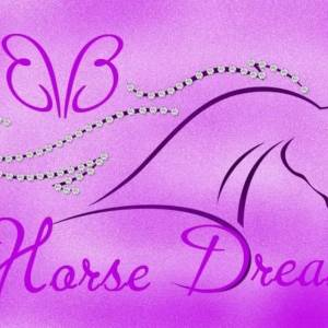 Bling Bling Horse Dreams