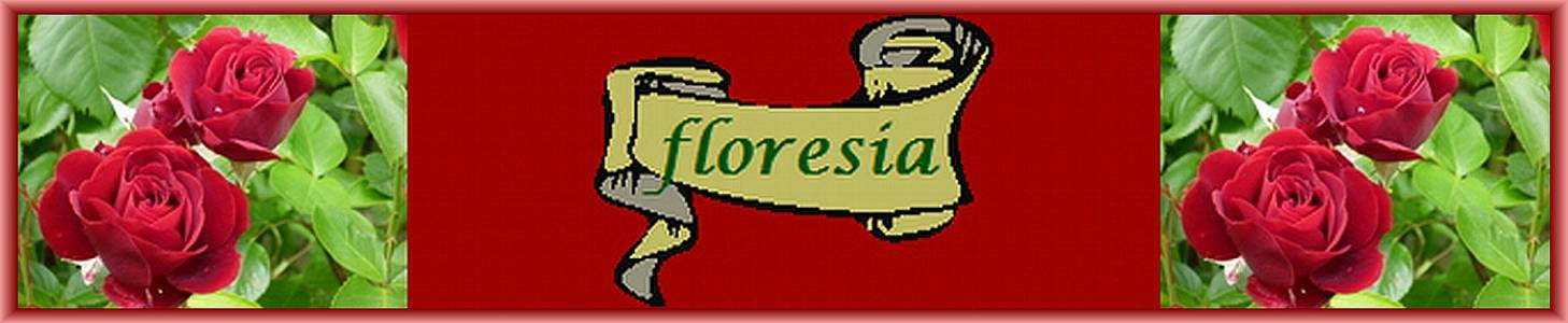 Floresia auf kasuwa.de