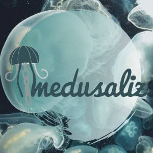 Medusaliz Upcycling