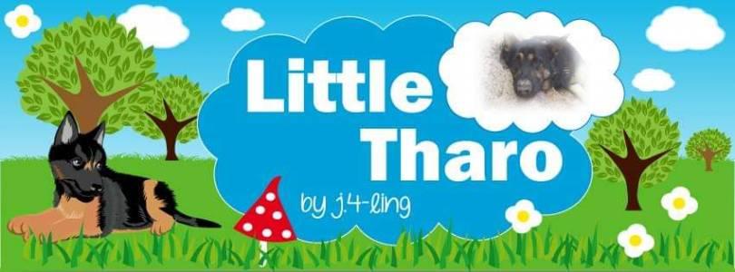 Little Tharo by j.4-ling auf kasuwa.de